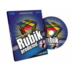 Rubik Predicted