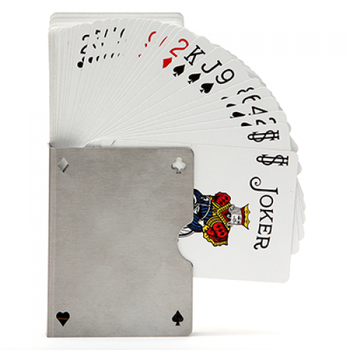 Card Guard Stainless (Perforated)