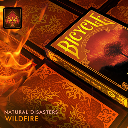 """Bicycle Natural Disasters """"Wildfire"""" Deck"""