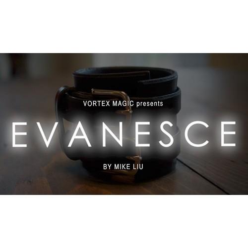 Evanesce von Mike Liu