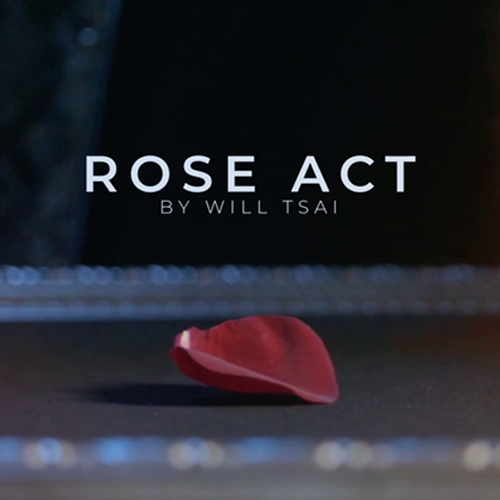 Visual Matrix (Rose Act)