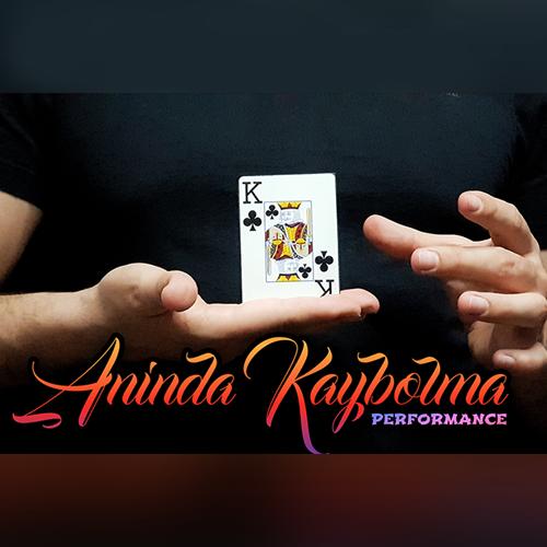 Aninda Kaybolma